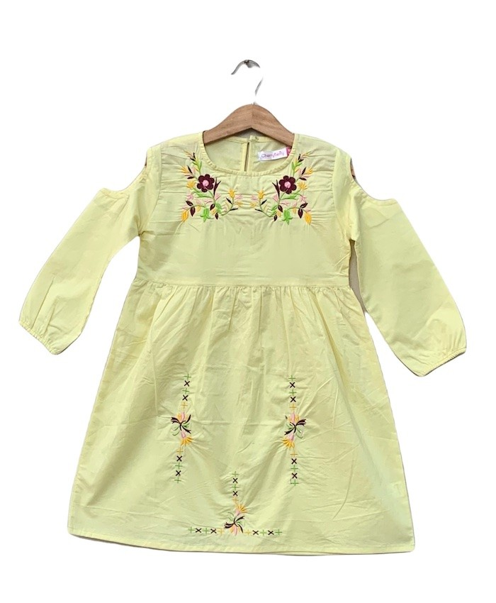 Baby girls cotton Embroider Top