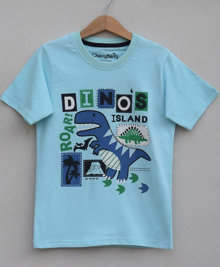 boys printed T-shirt (S19B56)