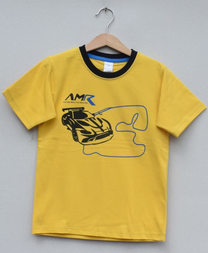 Boys printed T-shirt (S19B81)
