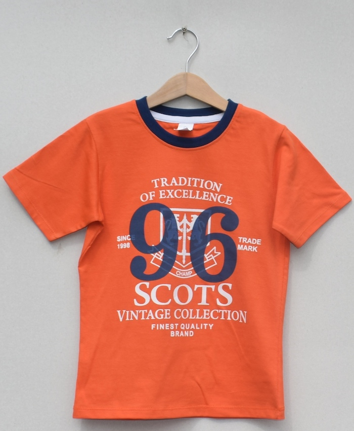 Boys printed T-shirt (S19B82)