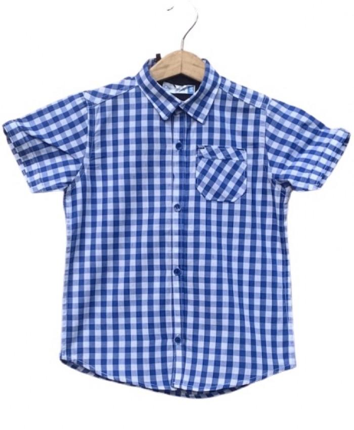 Boys Cotton Blue check Shirt