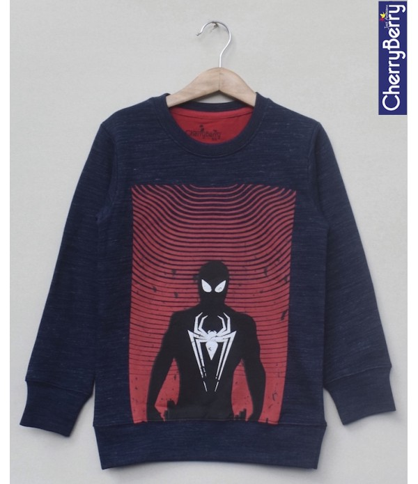 Kids Printed sweatshirt (W18B14)