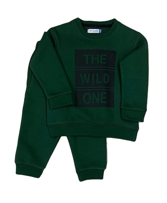Boys toddler sweatsuit